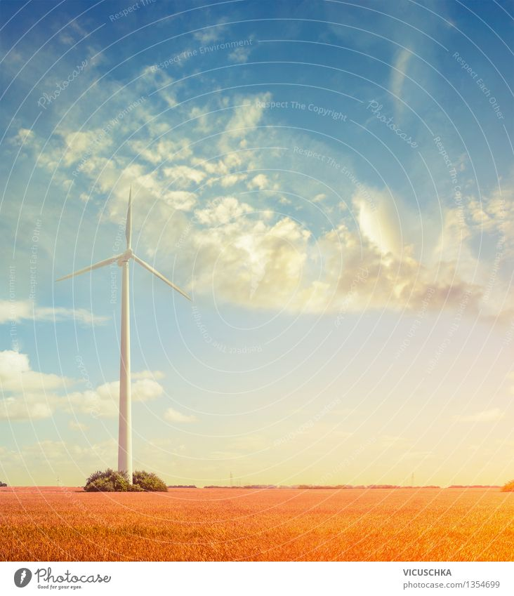 Windkraftanlage auf dem Feld Sommer Veranstaltung Fortschritt Zukunft High-Tech Energiewirtschaft Erneuerbare Energie Natur Himmel Sonnenaufgang Sonnenuntergang