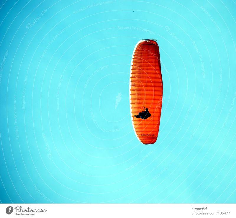 Überflieger Gleitschirm Luft Wolken Pilot schwarz Schauinsland Vogel Extremsport Luftverkehr Himmel blau orange Wind Wetter Berge u. Gebirge Sonne