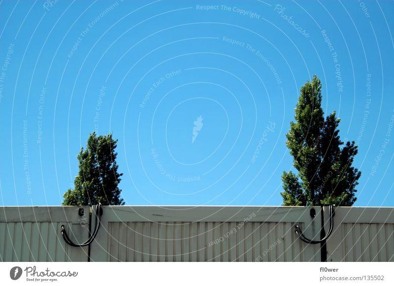 _/\___/\_ Schönes Wetter Blauer Himmel Bildausschnitt Nadelbaum Container Wolkenloser Himmel Wohncontainer Bildaufbau Klarer Himmel Stahlblech