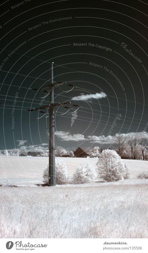 Wolkenkratzer Himmel weiß Baum Ferien & Urlaub & Reisen Schnee Erholung Wiese Gras Bewegung träumen Landschaft Erde Wind groß Energiewirtschaft