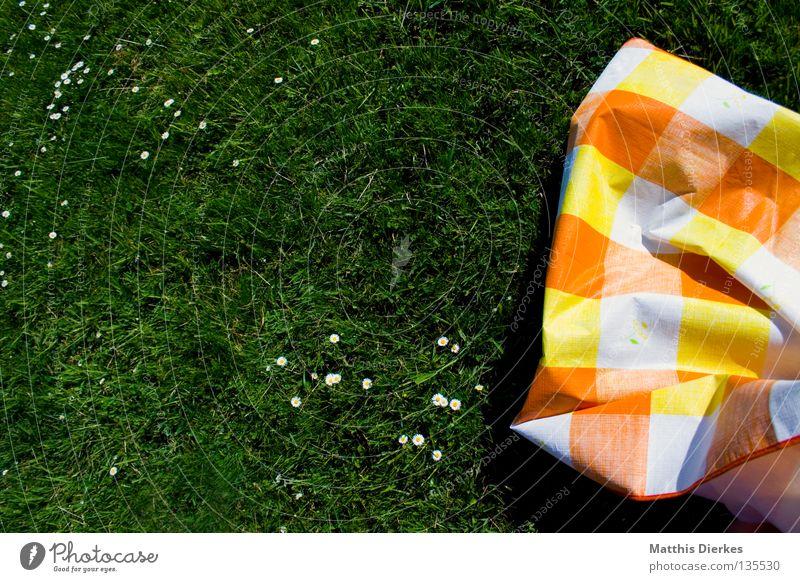 Tischdecke Sommer Wiese Gras grün Gänseblümchen kariert penibel Falte unordentlich Grillsaison Wohnung Ferien & Urlaub & Reisen Freizeit & Hobby Wochenende