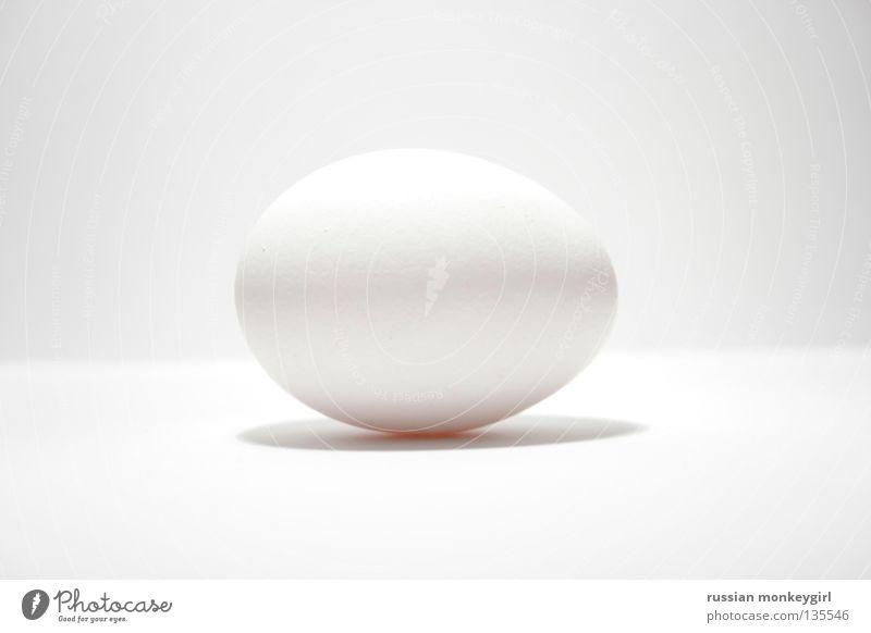 eggie weiß rund UFO Oval Haushuhn Vogel Gastronomie Ei Leben kücken