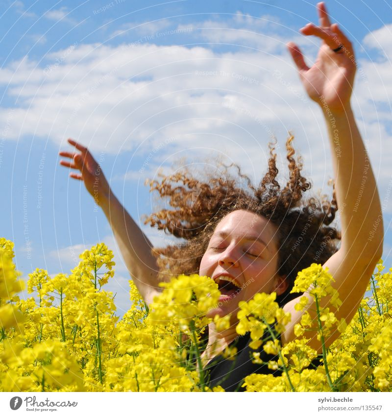 girls just wanna have fun Frau Himmel Hand blau Freude Wolken Gesicht gelb springen Haare & Frisuren Frühling Erwachsene lustig Feld Tanzen Arme