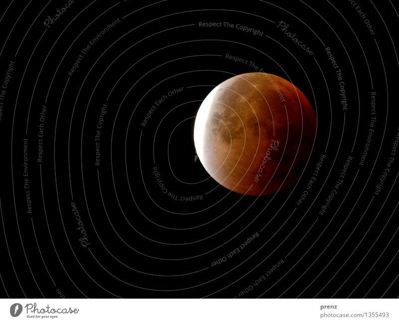 Mofi Umwelt Natur Himmel Nachthimmel Mond Mondfinsternis Vollmond Herbst Wetter Schönes Wetter rot 2015 Farbfoto Außenaufnahme Experiment Menschenleer