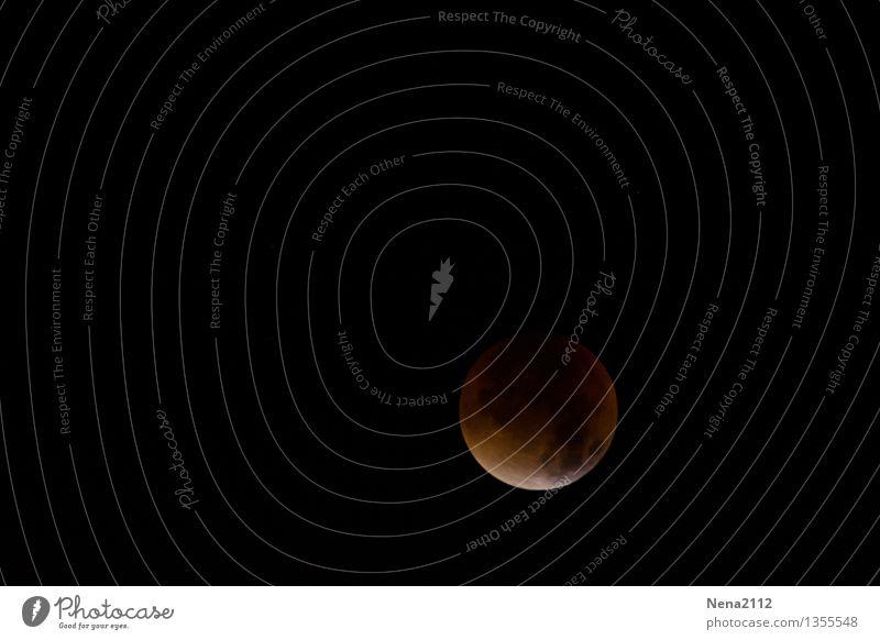 MoFi 2 Himmel Natur Ferne dunkel Umwelt außergewöhnlich ästhetisch fantastisch bedrohlich Urelemente rund Neugier Weltall Mond bezaubernd Nachthimmel
