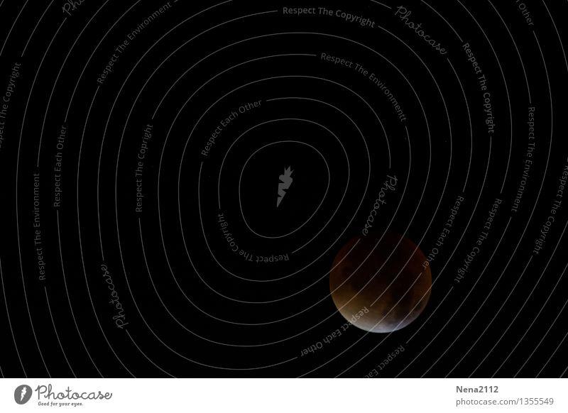 MoFi - fast totale Himmel Natur Ferne dunkel Umwelt außergewöhnlich ästhetisch fantastisch bedrohlich Urelemente rund Neugier Glaube Mond Interesse Nachthimmel