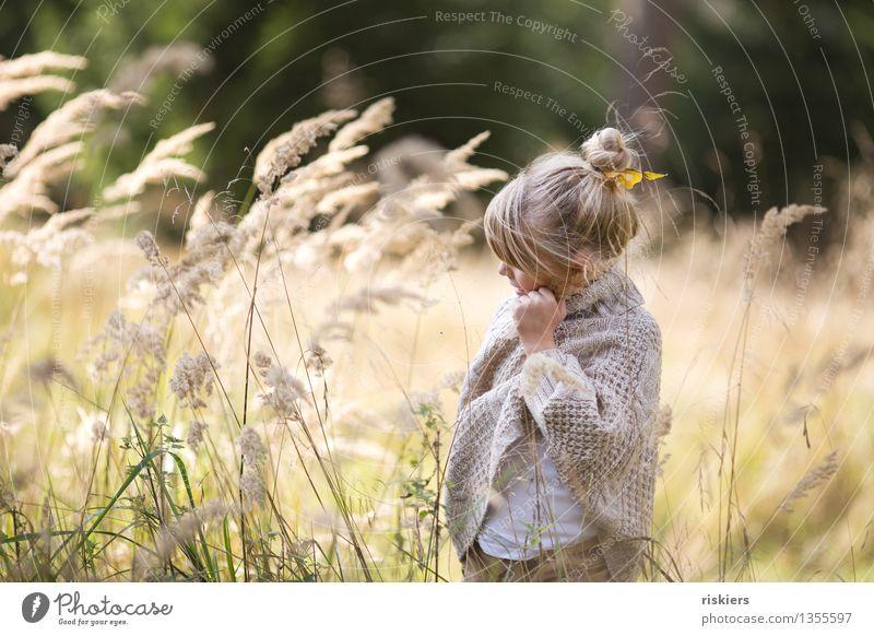 der Herbst ist da! Mensch feminin Kind Mädchen Kindheit 1 3-8 Jahre Umwelt Natur Pflanze Schönes Wetter Wind Gras Wald entdecken Erholung festhalten Lächeln