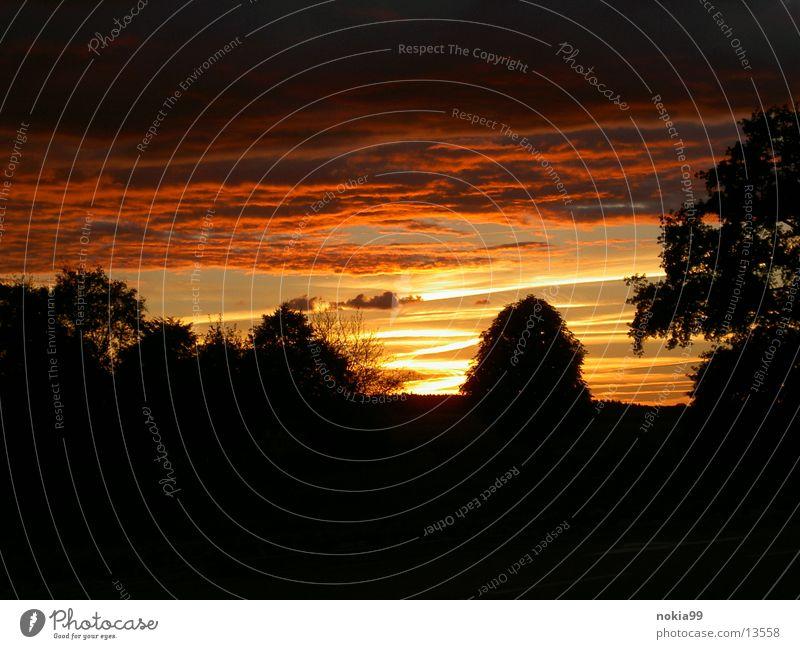 SonnenUntergang träumen