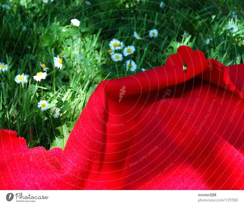 Picknick. Willste mit auf meine Decke? Sommer Physik rot Knall knallig verrückt Farbe stark grün Natur frei Freiheit Freibad Baggersee Teich Pfütze wenige