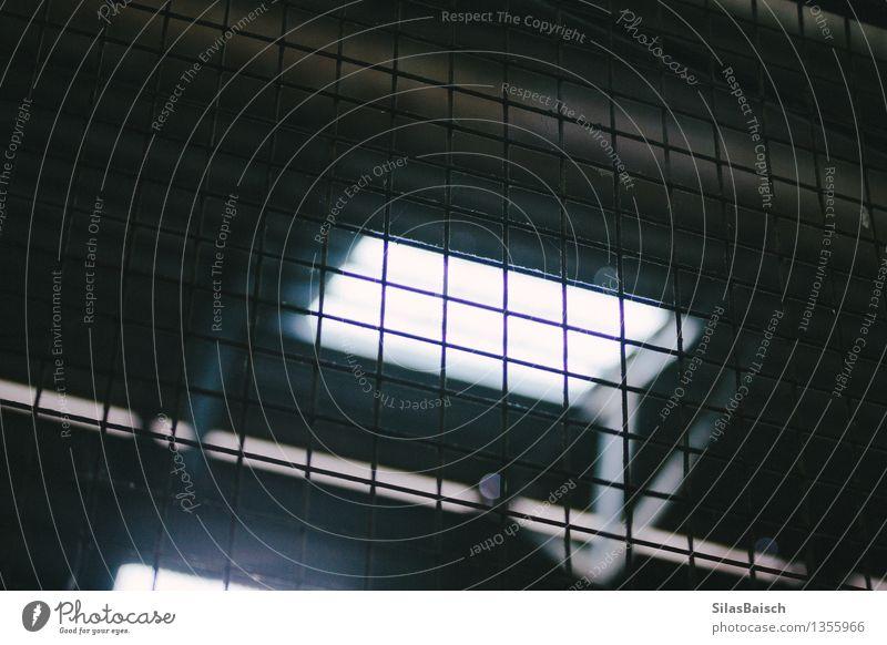 Verlassene Werkstatt alt Fenster Wand Mauer Arbeit & Erwerbstätigkeit einfach Industrie Baustelle Dach Zaun Tiefenschärfe Fabrik Arbeitsplatz Industrieanlage