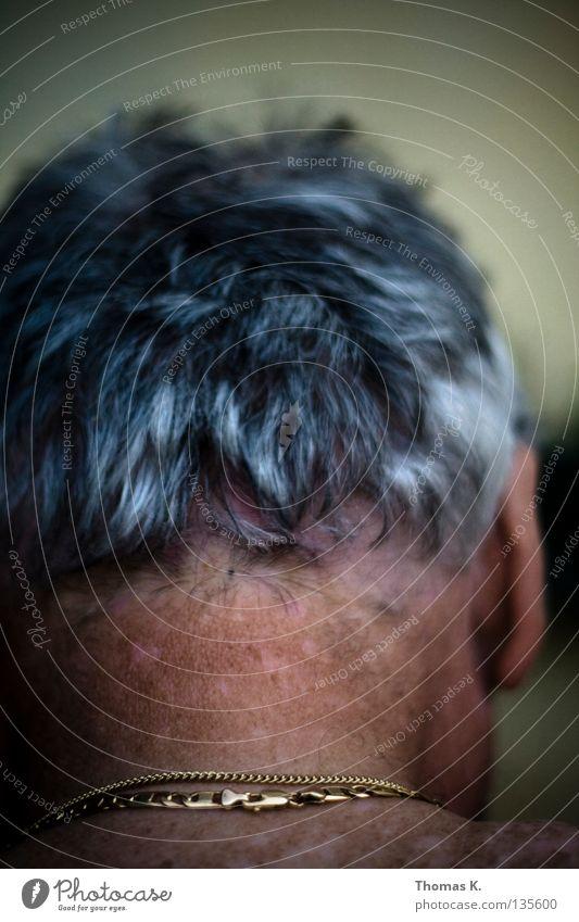 Silberrücken. Mit Gold. Haare & Frisuren grau Kopf Haut silber Hals Halskette Funsport