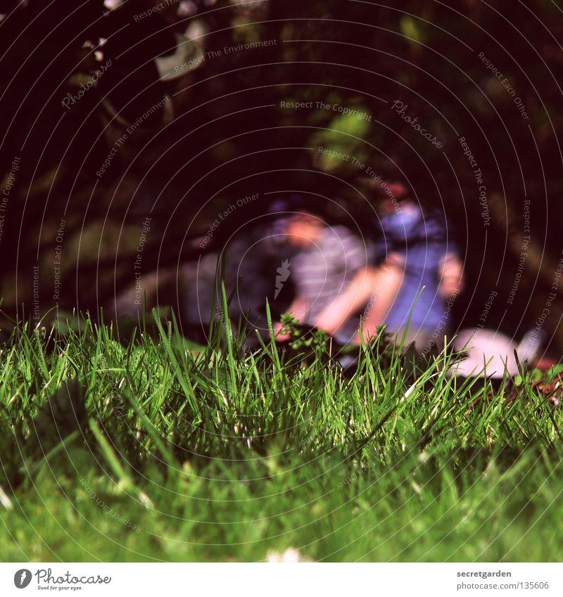 fleisch ist mein gemüse Mensch Natur Mann Sommer Erholung Ferne dunkel Gras Frühling Freiheit Garten Freundschaft hell Feste & Feiern Park liegen
