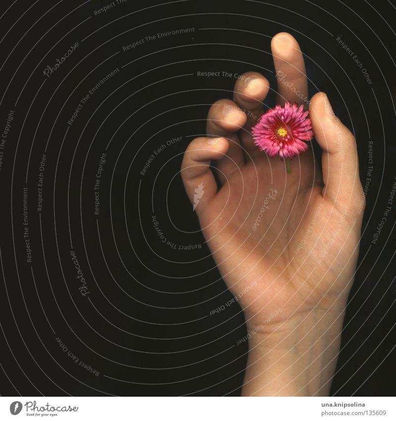 .fleur Hand Blume Gefühle Blüte Finger berühren Gefäße Blattadern Intuition Fototechnik Scan Fingerabdruck Scanner