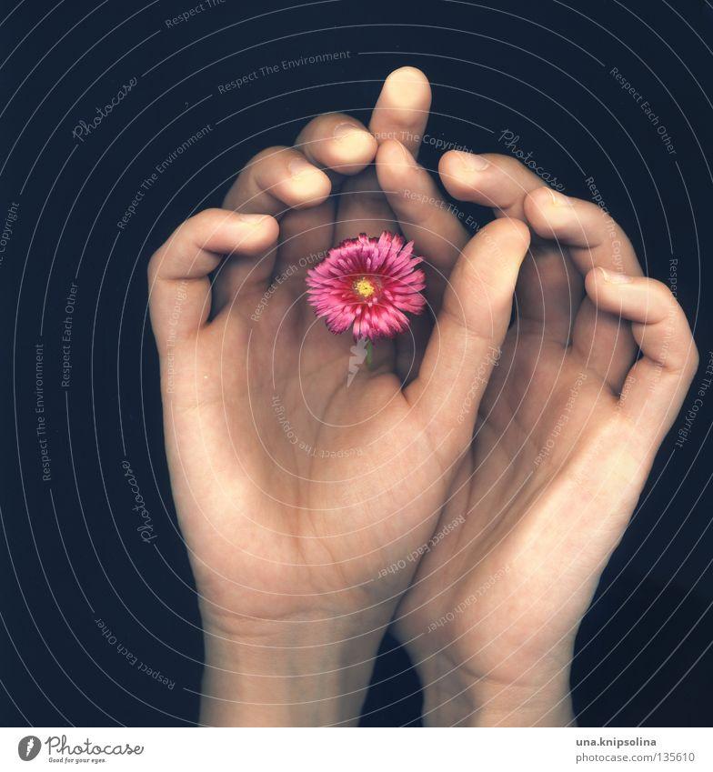 ..fleur Hand Finger Blume Blüte berühren Gefühle Scanner Intuition Gefäße Fingerabdruck Fototechnik scan-art fingerspitzen Blattadern Farbfoto Studioaufnahme