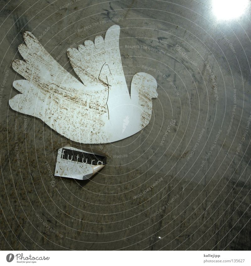 zukunftsaussichten Taube Frieden Symbole & Metaphern Krieg Völker Pazifist weiß Schablone Etikett dreckig Ehe unschuldig Gerechtigkeit Bibel Rede
