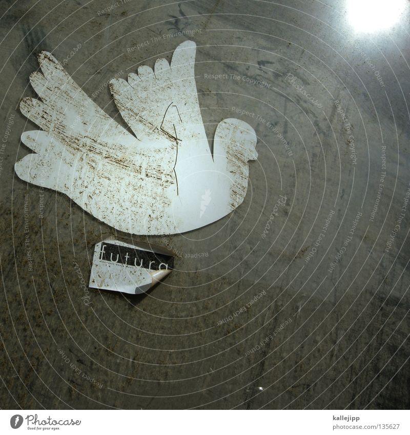 zukunftsaussichten weiß Sonne Bewegung Erde dreckig Völker Weltall Symbole & Metaphern Frieden gut Flüssigkeit Gewalt Fensterscheibe Krieg