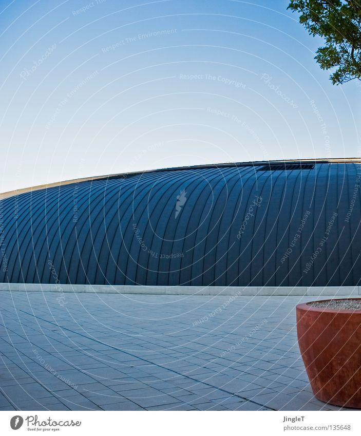 dezent Terrakotta Blumentopf Baum einzeln Kübel Platz Tonnengewölbe gekrümmt rund Dach Schönes Wetter attraktiv modern Metalldach Stehfalz Umgang Schatten