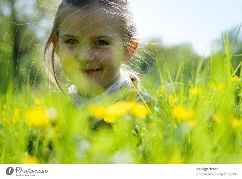 Blumenkind Kind Mädchen Frühling Sommer Physik Wiese Gras Gesundheit Pollen Blüte Tier Insekt Zecke verträumt träumen tauchen harmonisch Suche finden Löwenzahn