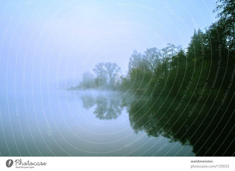 Nebel am See blau grün Gewässer Himmel Baum Reflexion & Spiegelung Morgen Dämmerung Morgennebel Herbst kalt mystisch Romantik ruhig Angeln Wasser