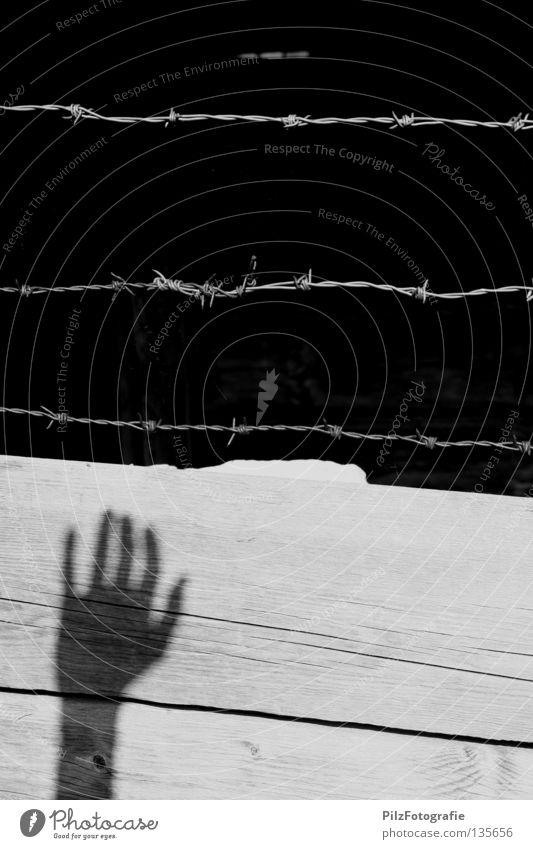 Ausbruch Freiheit Hand Hütte Mauer Wand Holz schwarz weiß Tod Schmerz Angst gefährlich Ende Krieg Stacheldraht driften gefangen flüchten Einbruch brechen