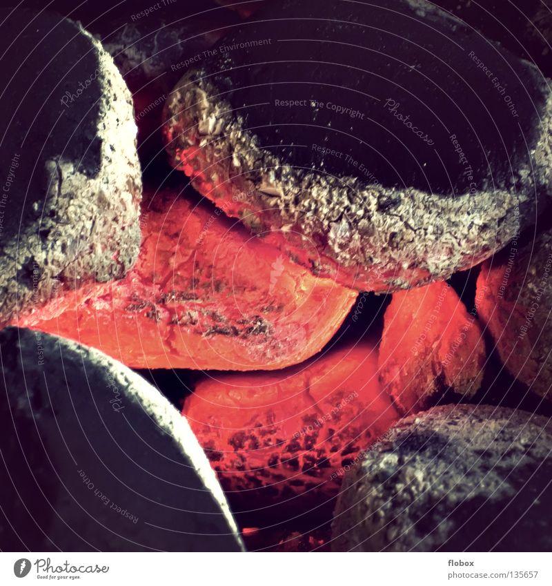 Auch Grillen :) Grillkohle Holzkohle heiß Physik Glut glühen glühend brennen Sommer rot gefährlich Grillsaison Würstchen Steak Grillrost Bratwurst Grillplatz
