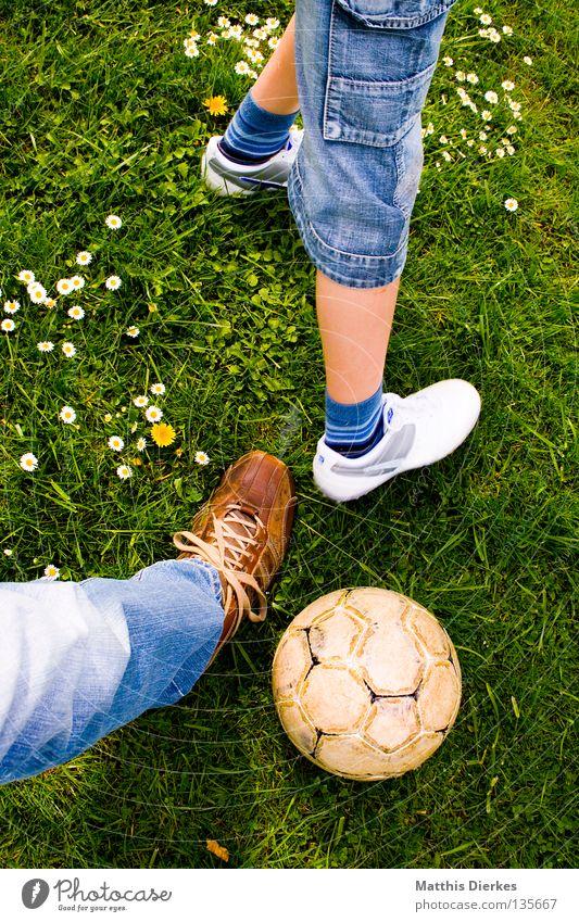Zweikampf Ballsport Sommer Wiese Gänseblümchen Pflanze grün Grünstich Hose Jeanshose Schuhe Lederschuhe Fußball Freizeit & Hobby spontan Sport Luft Duell