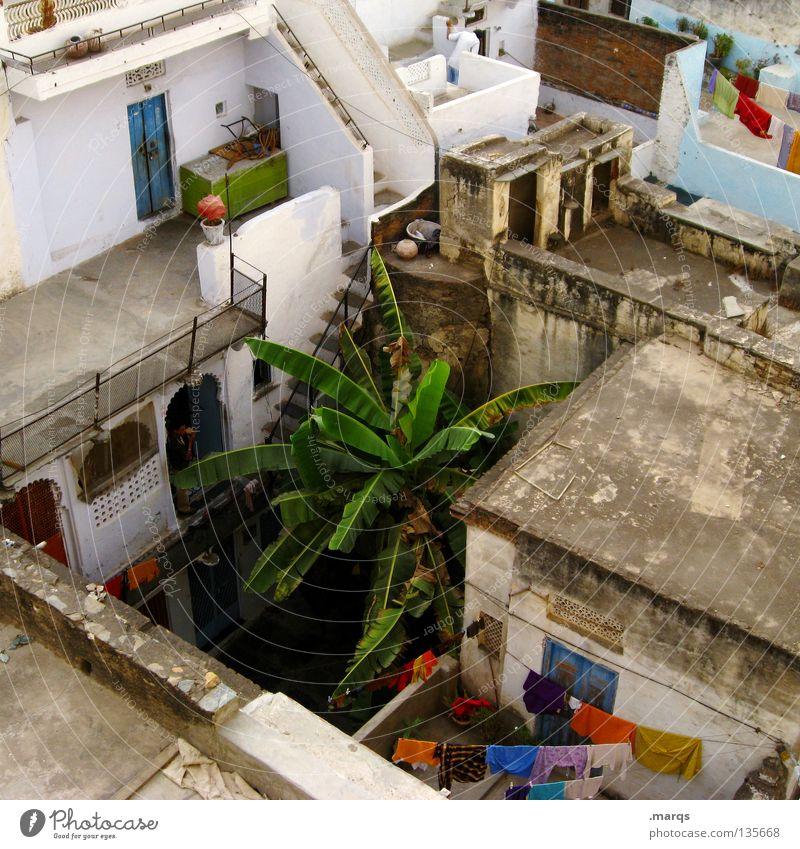 Fremde Hinterhöfe Haus Dach eng Hinterhof Ecke Fenster verfallen Einblick Aussicht Wäsche Kleid Bekleidung mehrfarbig trocknen trocken Physik heiß Neugier