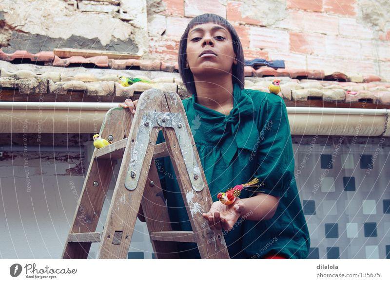 THE BIRDS GIRL Mädchen Porträt Vogel Spielzeug Dachziegel Holz Holzleiter Renovieren schön Gezwitscher retten ernst Vorhang Dachrinne Wasserrinne Rettung