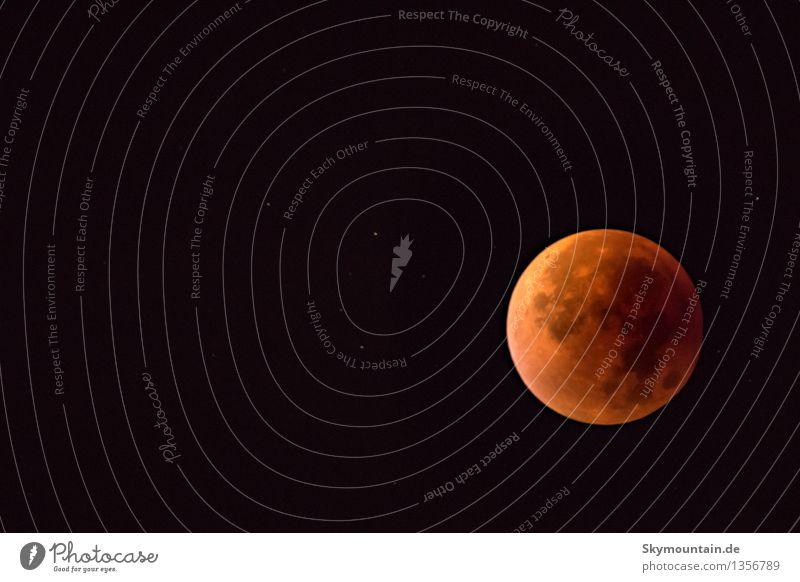Mondfinsternis September 2015 Himmel Natur schön schwarz Umwelt gelb Herbst Gefühle Stil Glück außergewöhnlich braun orange träumen Design elegant