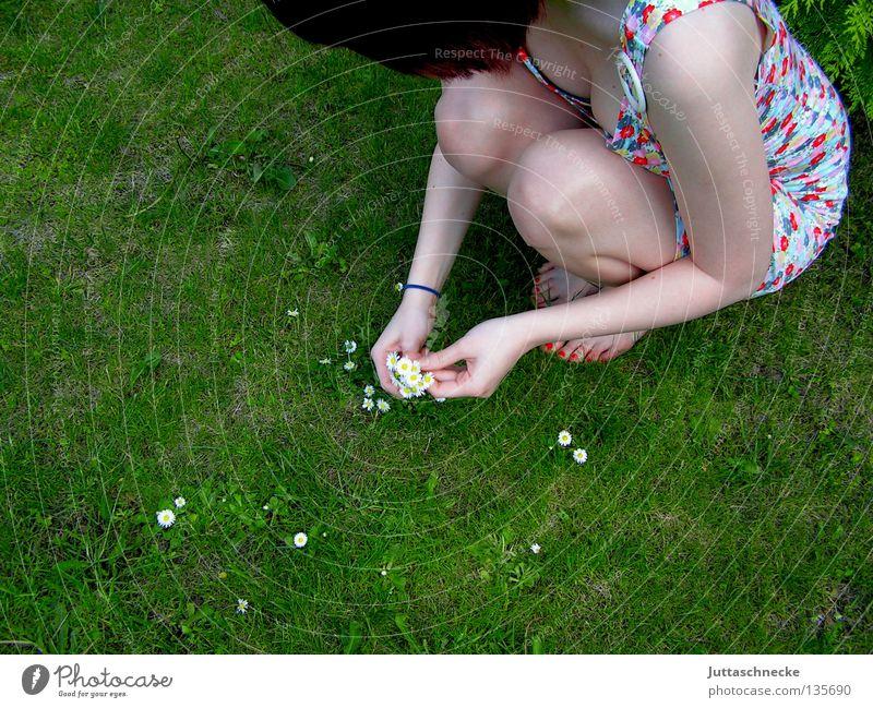 Biologische Unkrautvernichtung Frau Sommer Blume Wiese Garten Denken Frühling träumen Romantik Rasen Schönes Wetter Ernte Gänseblümchen verträumt hocken Hippie