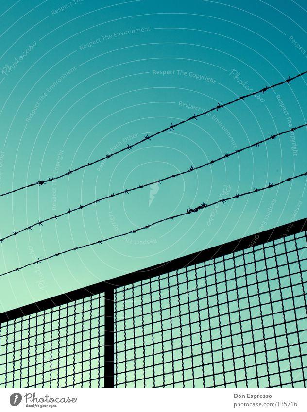FREEDOM Stacheldraht Zaun gefangen Justizvollzugsanstalt Mauer bewachen Guantanamo Haftstrafe Sträfling Wolken Sicherheit einsperren Krimineller Bootcamp