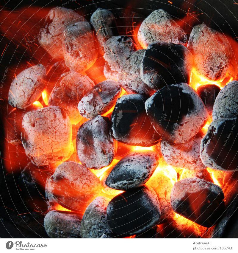 nochmal Grillen rot Sommer Freude Ernährung Wärme Brand Kohle gefährlich Physik Gastronomie heiß Grillen brennen Flamme Grill glühen