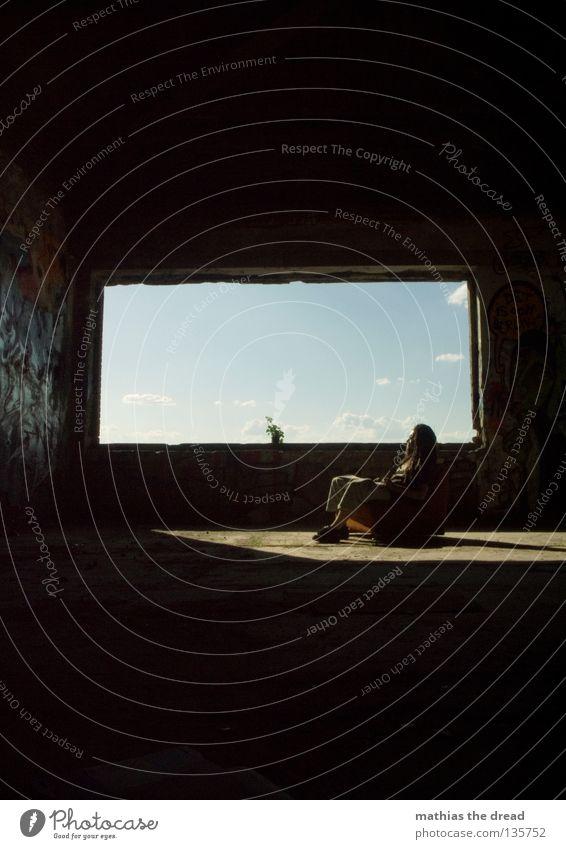 WINDOW I schön Himmel weiß Blume blau Pflanze Sommer Haus schwarz Wolken Einsamkeit Leben dunkel Erholung Stil Fenster