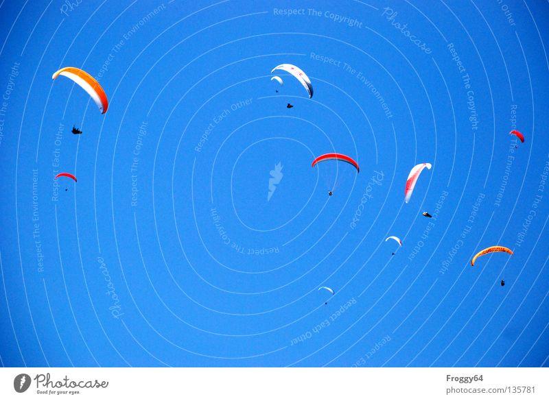 Geflügel Gleitschirm Luft Wolken Pilot schwarz Schauinsland Vogel Sportveranstaltung mehrfarbig Spielen Extremsport Luftverkehr Himmel blau orange Wind Wetter