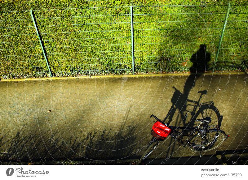 Schattenradakrobat Mensch grün Erholung Spielen Garten Park Fahrrad Freizeit & Hobby Zaun Fahrradtour Gartenzaun Arbeitsweg Maschendrahtzaun Erholungsgebiet