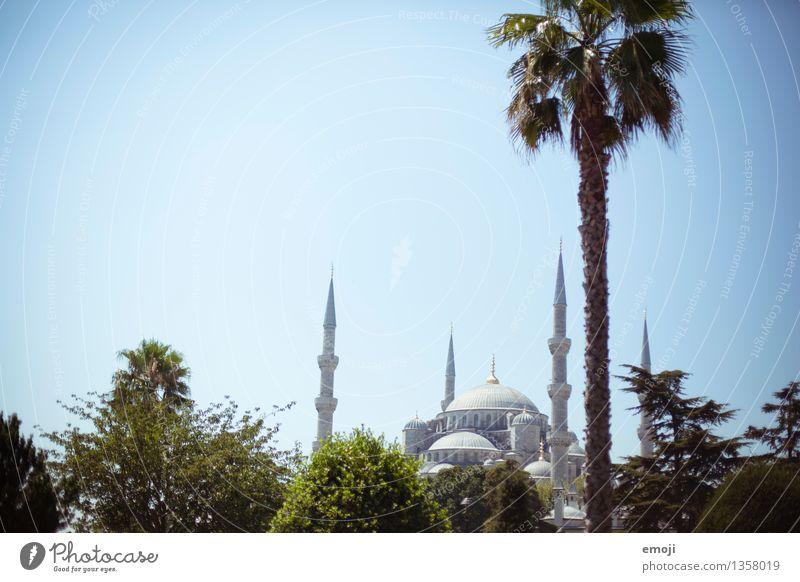 Istanbul Natur Schönes Wetter Stadt Hauptstadt Moschee Sehenswürdigkeit außergewöhnlich Naher und Mittlerer Osten Tourismus Ferien & Urlaub & Reisen