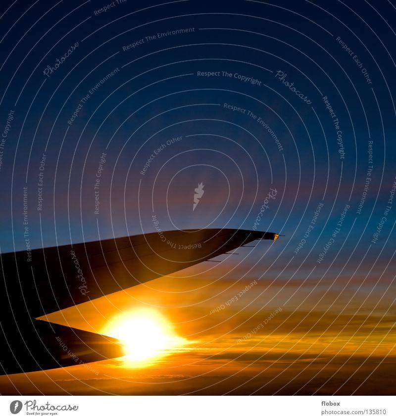 Burning über den Wolken Sonnenuntergang Flugzeug Tragfläche Triebwerke Fensterplatz mehrfarbig grell brennen Fluggerät Luft Eis Physik kalt heiß Motor Maschine