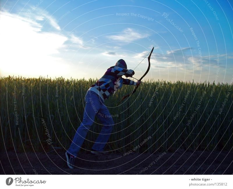 Zugriff Mensch Himmel blau weiß grün rot Sonne Wolken gelb Feld beobachten Schönes Wetter violett Getreide Jagd Pfeile