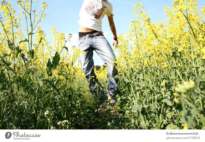 Ohne Kopf in die Welt Mann Rapsöl Sommer Feld springen grün bauchfrei fantastisch Freude Typ Blumenfel Jeands Freiheit blau Himmel Blauer Himmel Glück