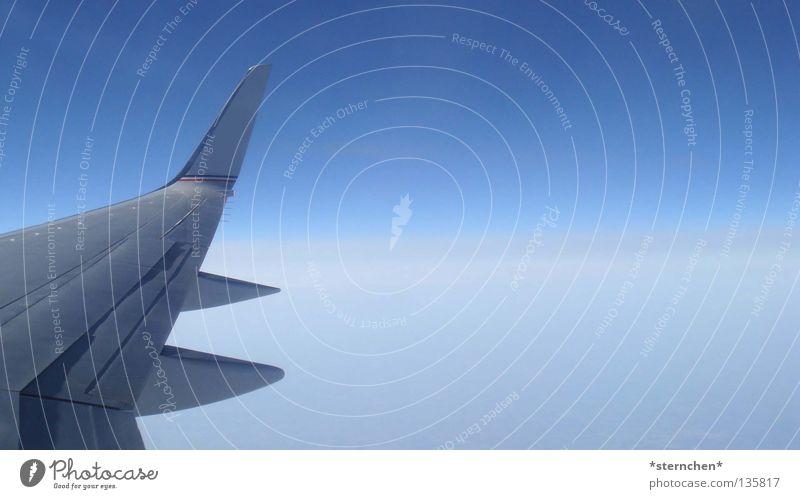 Über den Wolken... Flugzeug Luftverkehr weiß Tragfläche über den Wolken Geschwindigkeit kalt Ferien & Urlaub & Reisen Himmel blau frei hoch