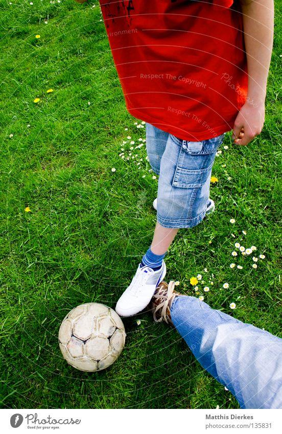 Grätschen Kind Jugendliche grün Pflanze rot Sommer Sport Wiese Spielen Garten Luft Schuhe Fußball Jeanshose Ball Rasen