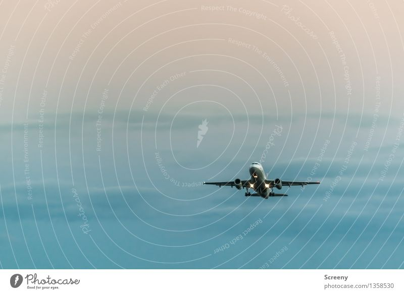 Flug | 555 Himmel Ferien & Urlaub & Reisen Wolken Ferne Tourismus Luftverkehr Technik & Technologie hoch Flugzeug Flugzeugstart Fernweh Passagierflugzeug