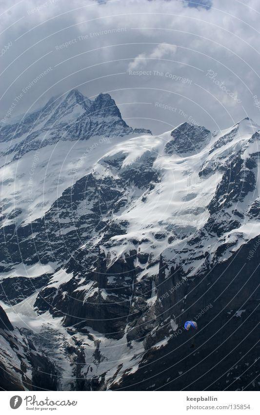 Hoch in den Lüften Wolken Schnee Spielen Berge u. Gebirge Eis fliegen Schweiz Gletscher Gleitschirmfliegen Extremsport