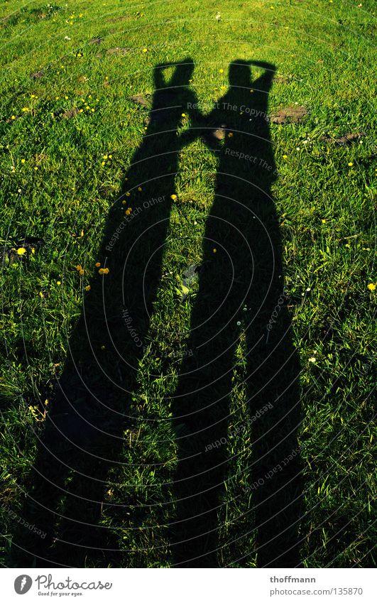 Na wer macht das Foto? :D lang gezogen Weitwinkel gekreuzt Wiese Blume Gänseblümchen Löwenzahn Vertrauen Sommer Paar Sonne Abend Schatten Arme Rücken