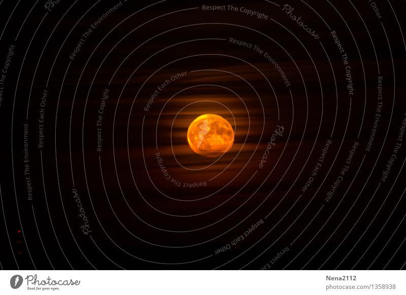 Vollmond Umwelt Luft Himmel Wolken Nachthimmel Mond Schönes Wetter fantastisch rund gelb gold orange Mysterium Mondschein Mondaufgang Mondsüchtig NASA Weltall