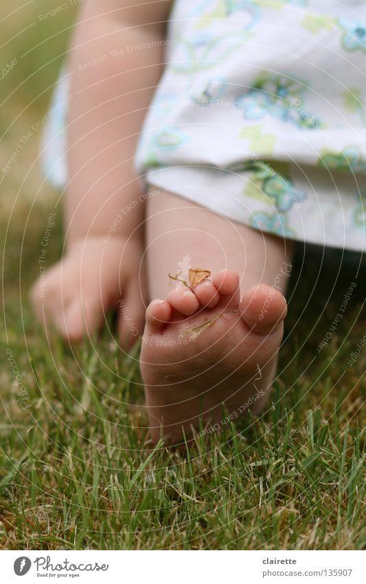 moos-an-fuß Mensch Kind Hand Sommer Wiese Gras Frühling Beine Fuß Baby dreckig Arme sitzen Kleid Kleinkind Zehen