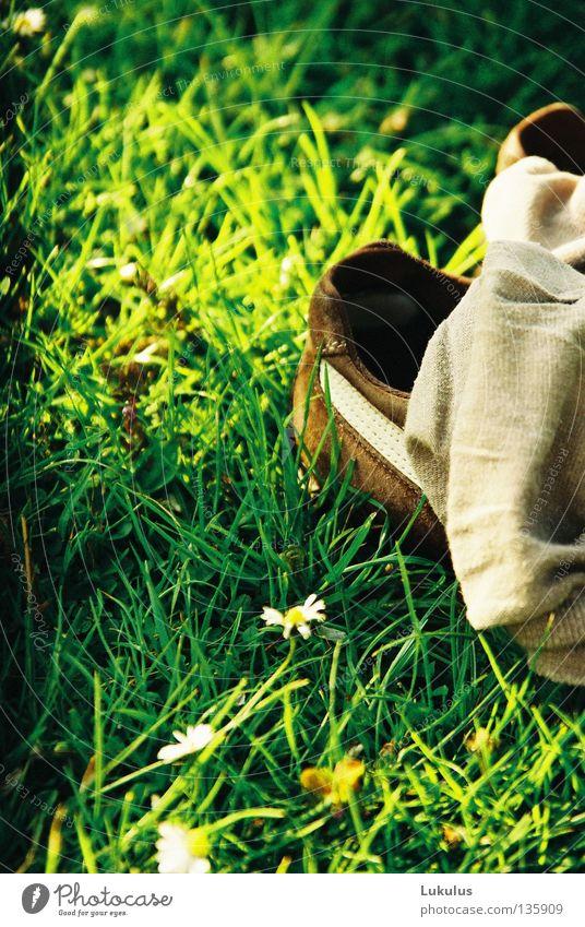Barfuß grün gelb Gras Schuhe braun Frieden Streifen Strümpfe Gänseblümchen