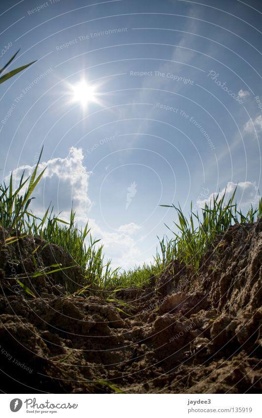 Ein tiefer Einblick! Himmel Sonne blau Sommer Gras hell braun Erde trocken Bergbau Graben Braunkohlentagebau
