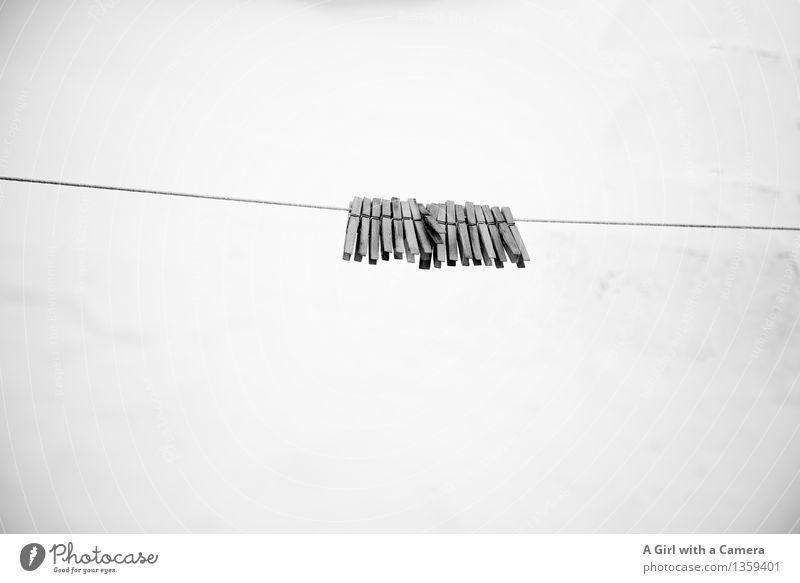 Montags haben wir frei! Wäscheklammern hängen Zusammenhalt Zusammensein Waschtag Wäscheleine Holz abstrakt aufeinander altmodisch umweltfreundlich festhalten