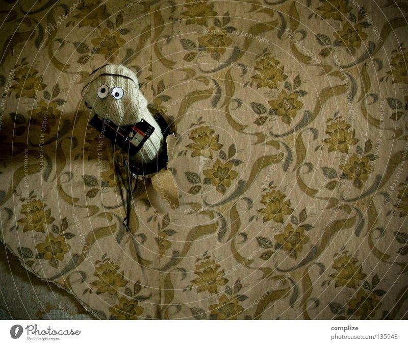 Mist erwischt! alt Blume Tier Einsamkeit Haus Wege & Pfade Innenarchitektur Musik Raum Wohnung Angst Design kaputt Bodenbelag Baustelle retro
